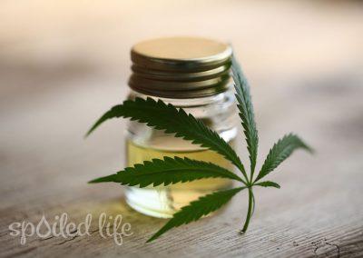 Fast and Furious – Rise of CBD Cannabinoids