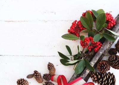 Christmas spirit or Christmas stress?